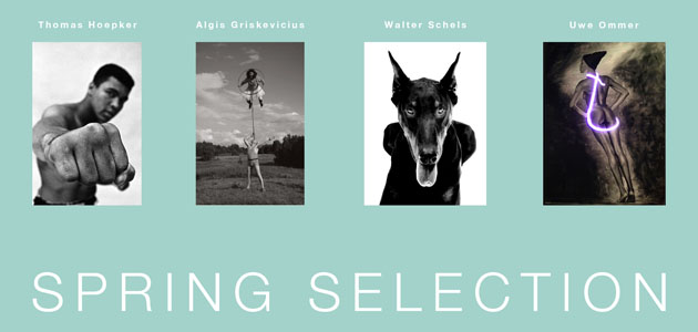 Spring selection_Vorderseite